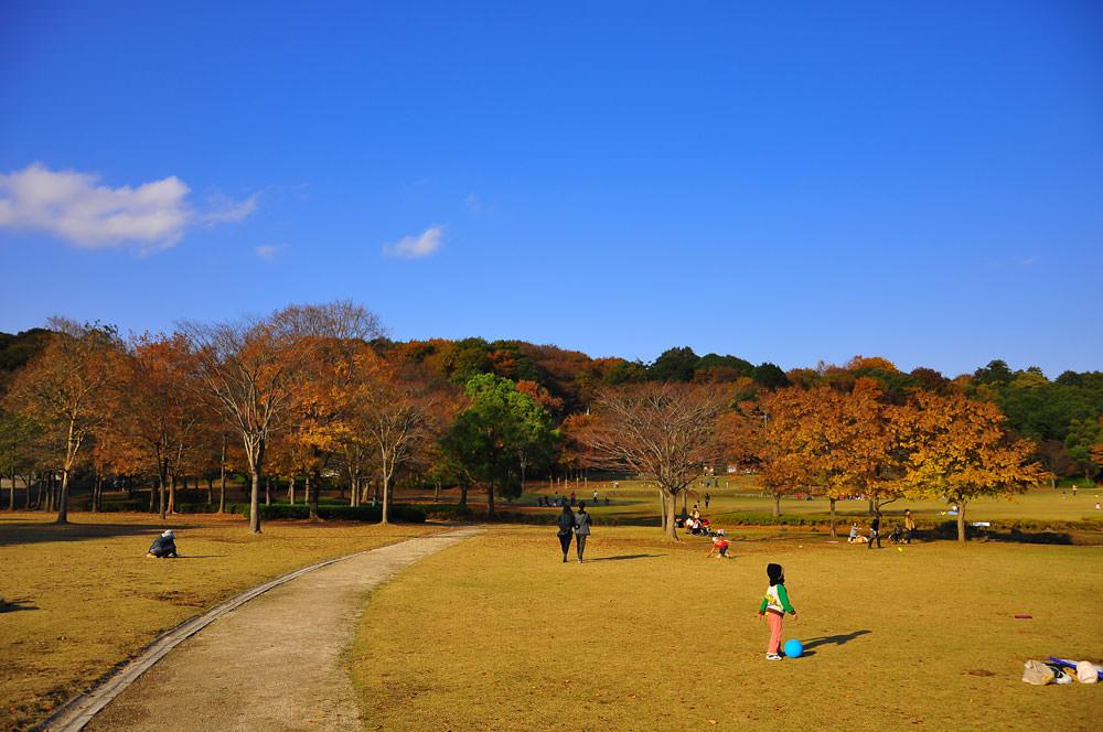 fukaki-kisha