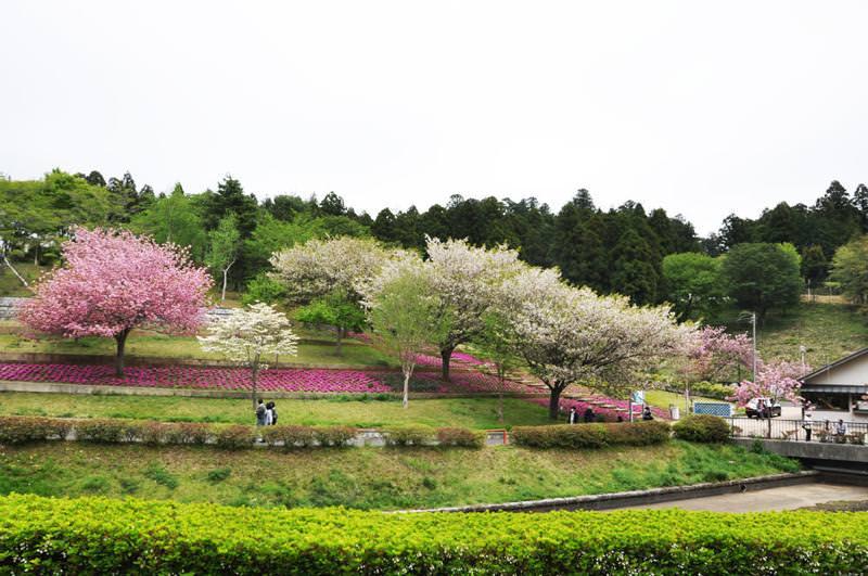 水戸静峰公園