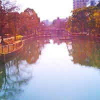 横十間川親水公園〜砂町銀座