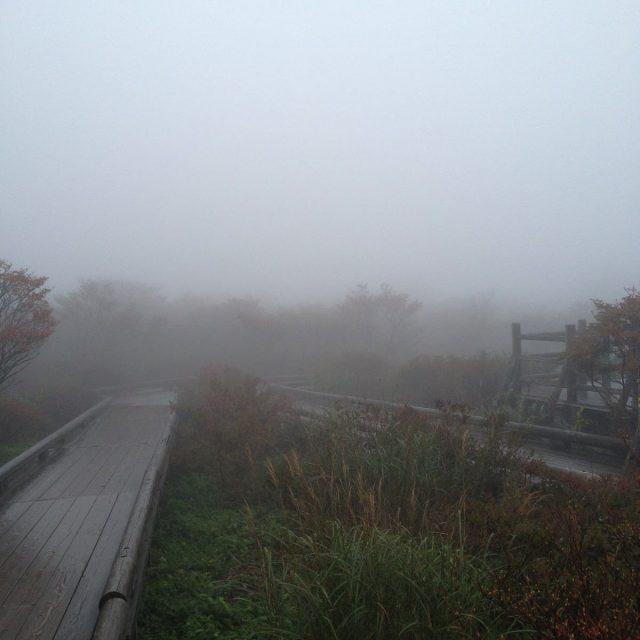 霧の那須高原