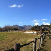 牧場を散歩
