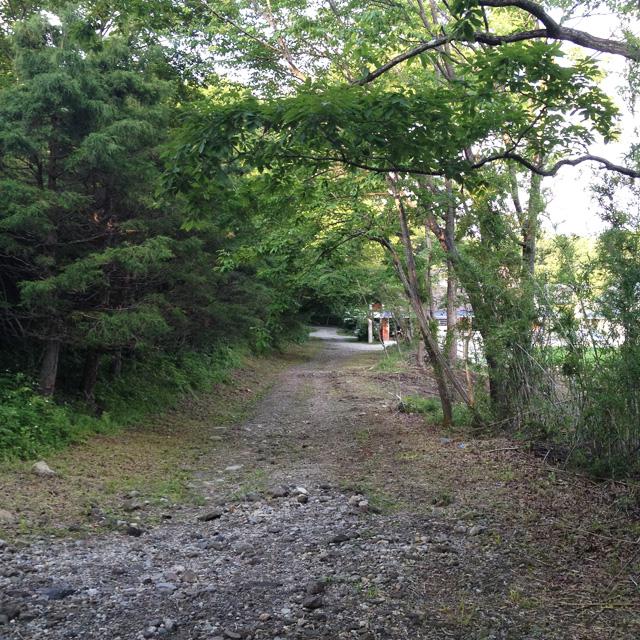 近所の小道