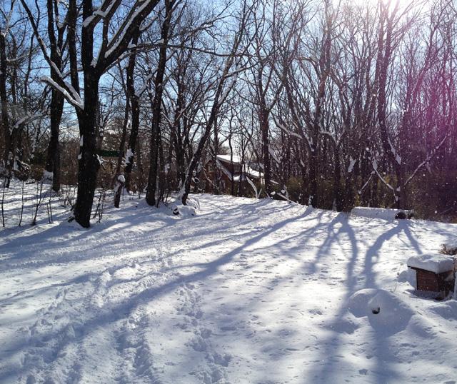 多めの積雪