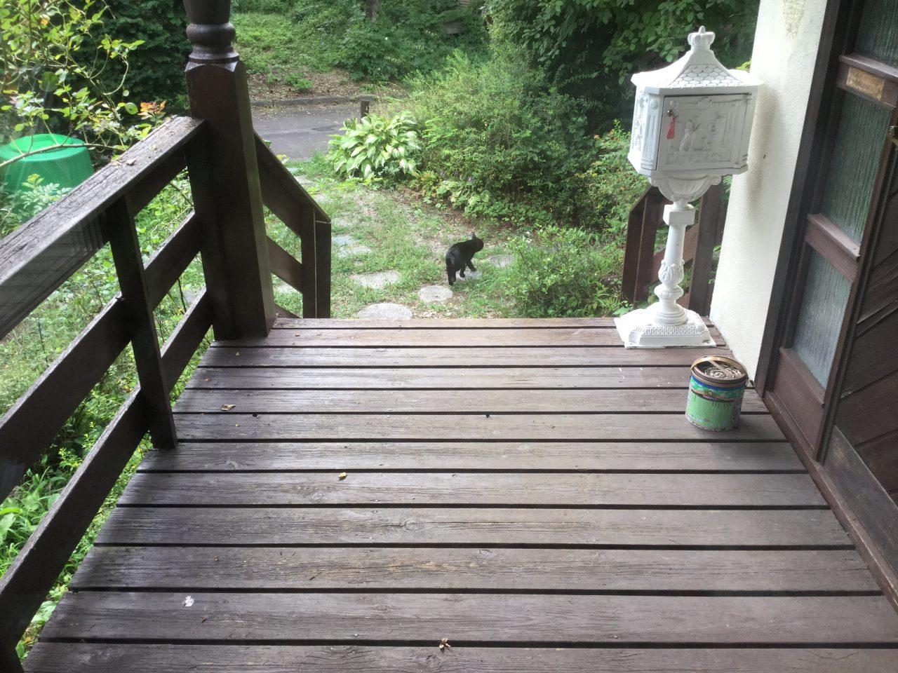 枝拾いと薪づくりと黒猫