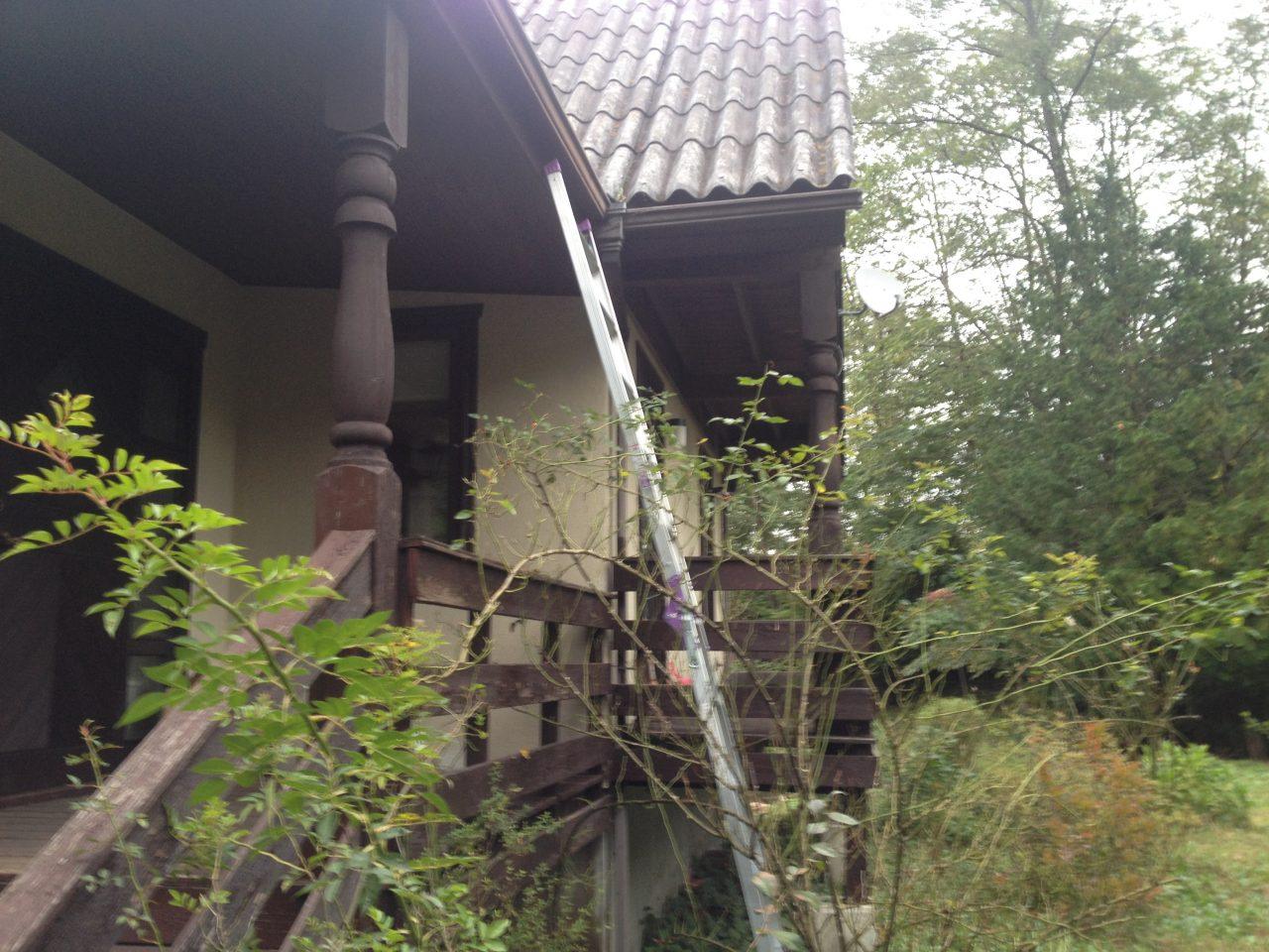 雨樋の掃除