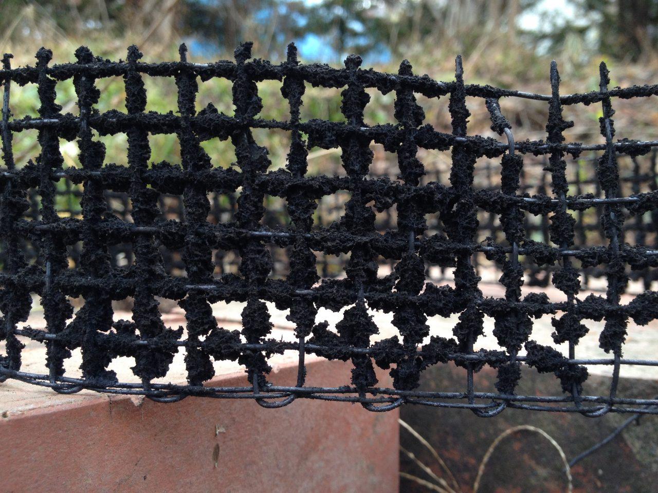 防鳥網の煤