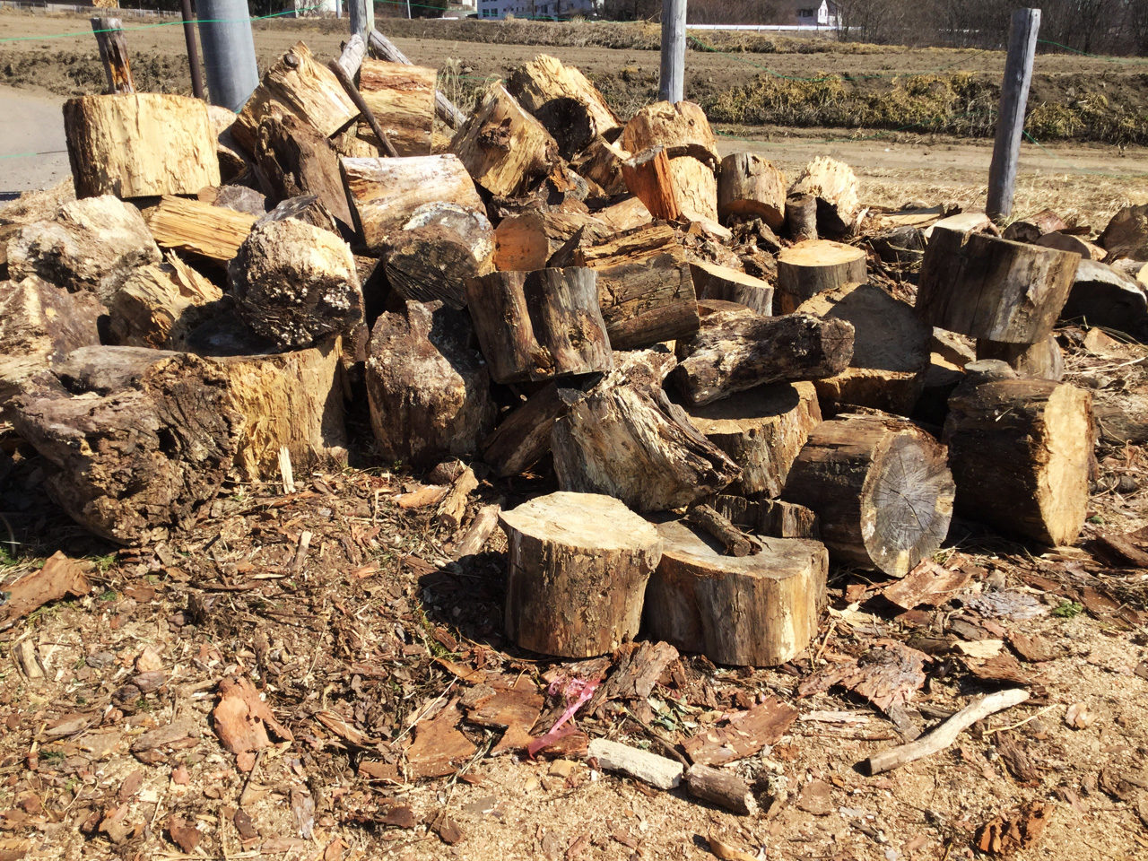 隣町の貯木場