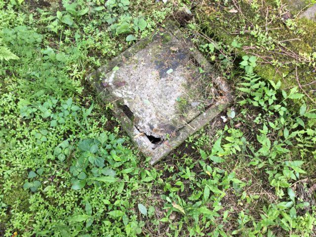排水桝の蓋