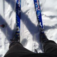 庭でスキー