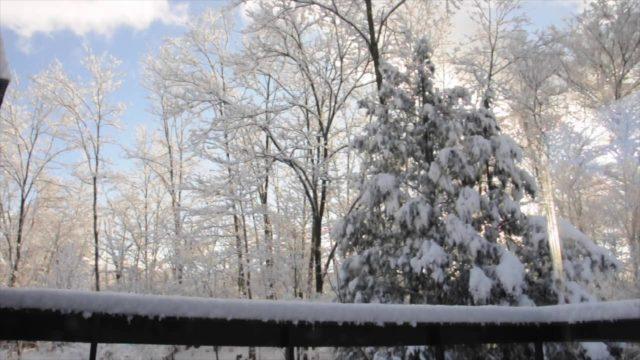 雪が降った夜の翌朝