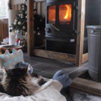 薪ストーブでくつろぐ猫