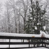 豪雪と停電のコンボ