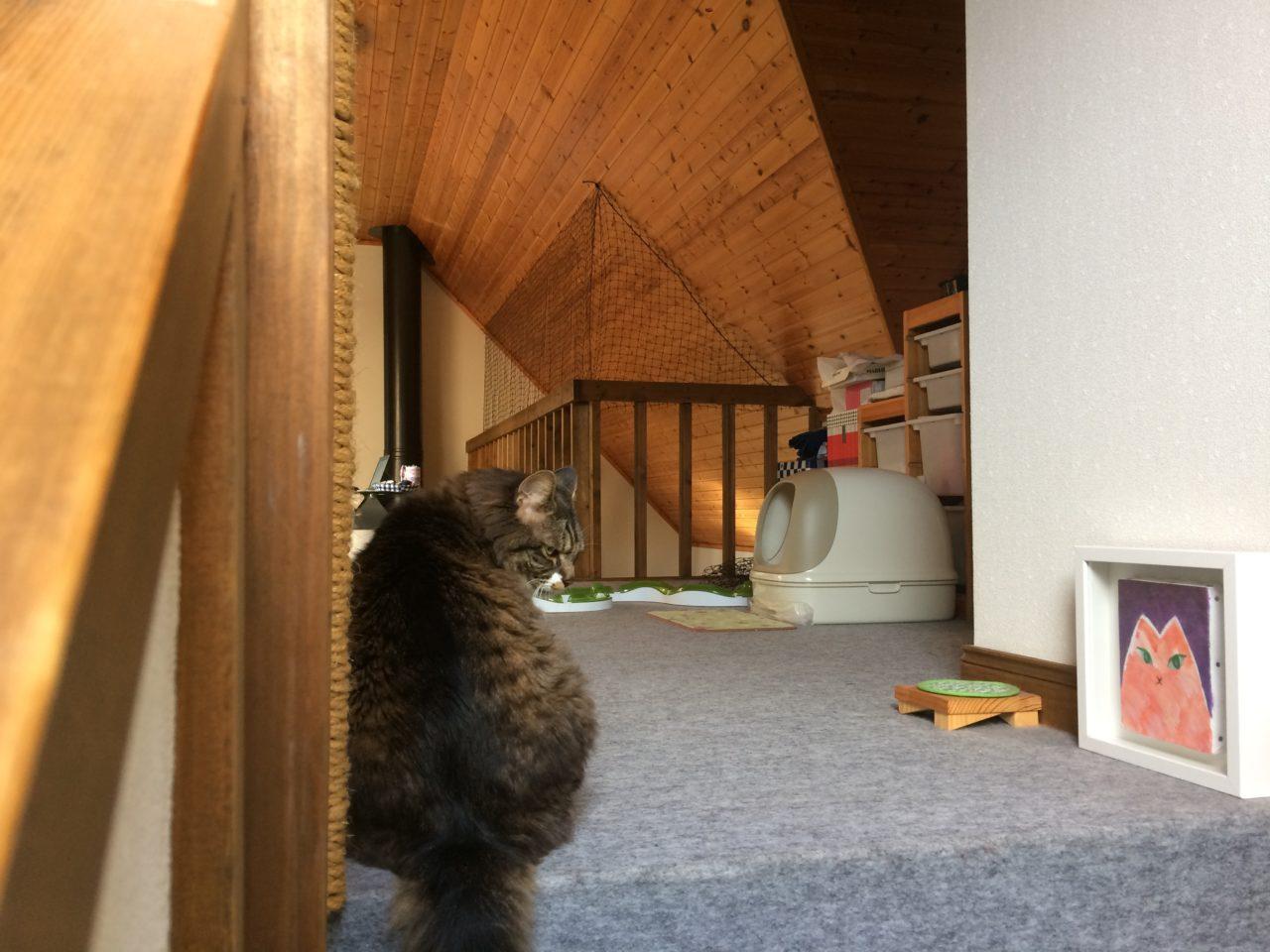 吹き抜けに猫の落下防止用ネットを設置