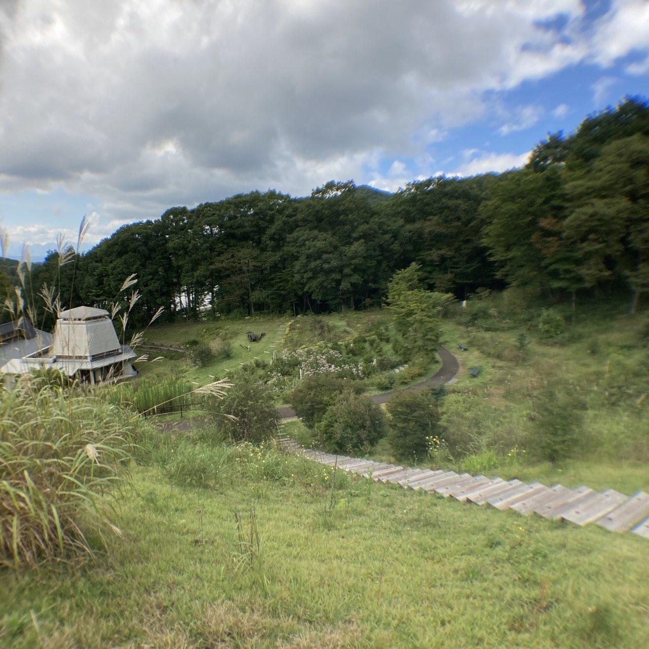 中之条山の上庭園のアサギマダラ