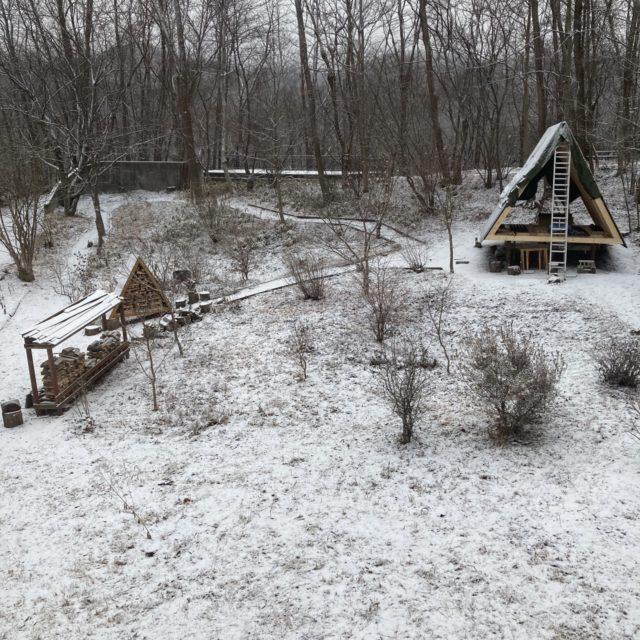 うっすら初雪