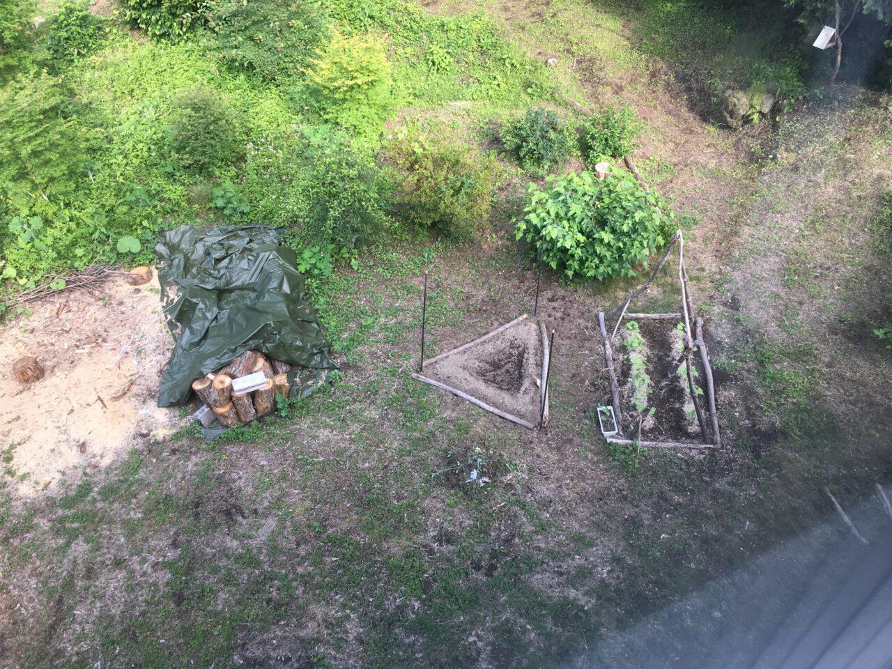 家庭菜園2021